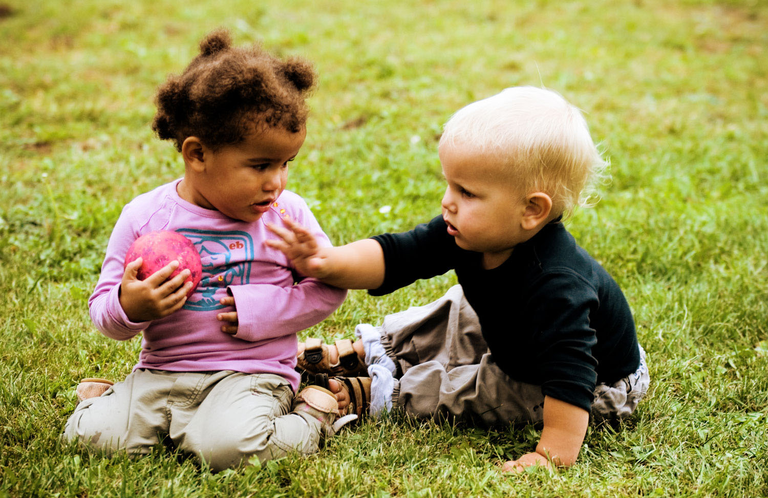 Image result for toddler social emotional development